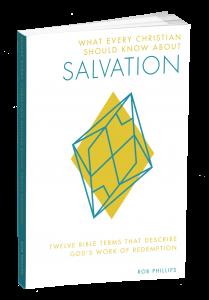 salvation3d_2-209x300
